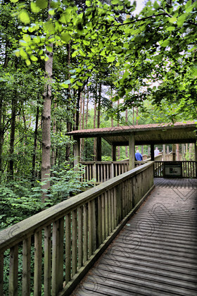 PrfdHDR SAM0377 