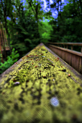 PrfdHDR SAM0386 