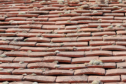 IMG 0205 